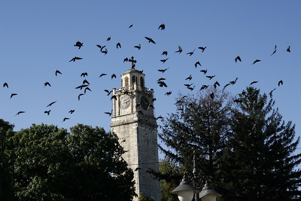 Saat Kula Bitola